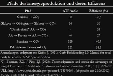 Pfade der Energieproduktio und deren Effizienz