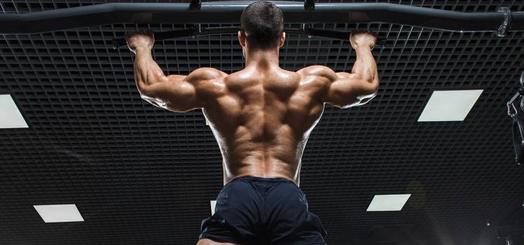 2 große Fehler beim Training der Rückenmuskulatur