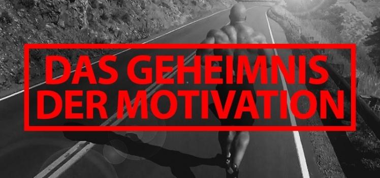 Das Geheimnis der Motivation von Patrick Petersen