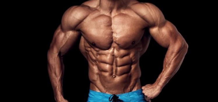 Creatin und Muskelaufbau – Das solltest du beachten!