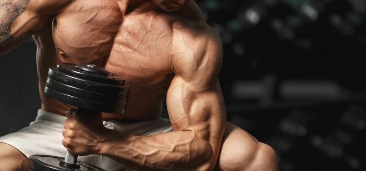 Diese Menge Protein benötigt dein Körper!