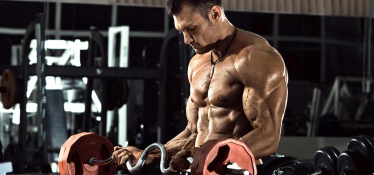 Meine Top 3 Bizeps-Übungen für den Muskelaufbau
