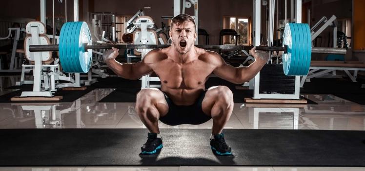 Muskelhypertrophie – so funktioniert der Muskelaufbau!