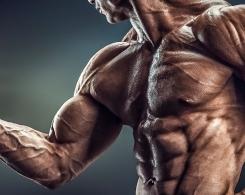 5 Lebensmittel die deinen Testosteronspiegel erhöhen