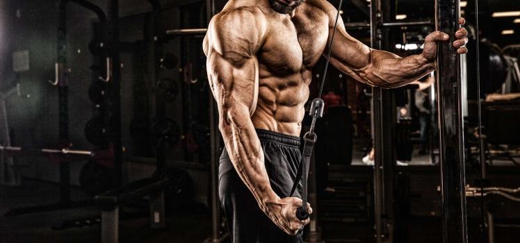 Die 2 größten Fehler beim Muskelaufbau!