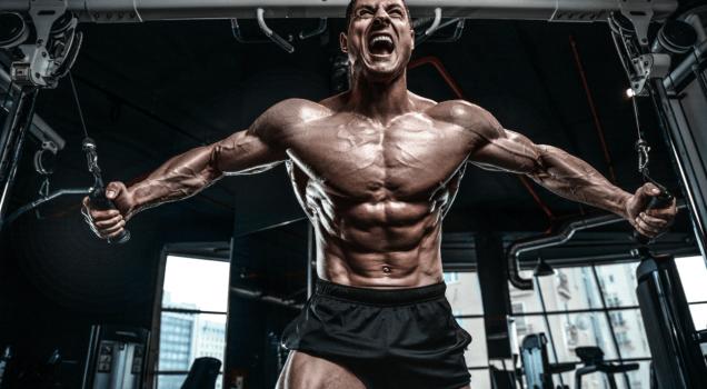 Wie lange muss ich nach einem Trainingsplan trainieren?